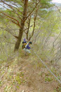 春の登山道整備