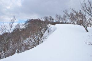二口登山道