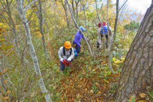 秋の登山道整備