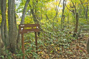 二口登山道の道標