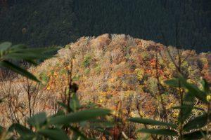 山頂から見る中尾根