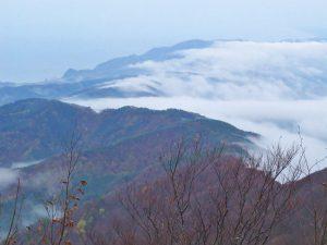 山頂から見る雲海