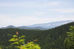 獅子畑登山道からの月山